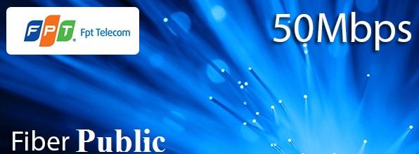 fiber-public
